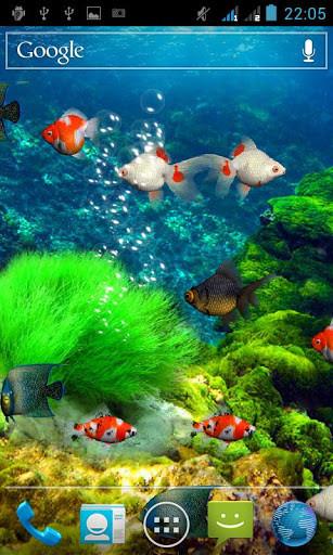 Заставка на телефон аквариум скачать бесплатно