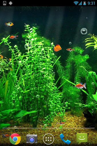 Image 1 Of Aquarium Live Wallpaper HD For Android
