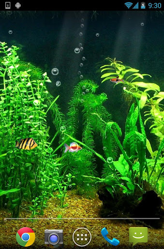 Image 3 Of Aquarium Live Wallpaper HD For Android